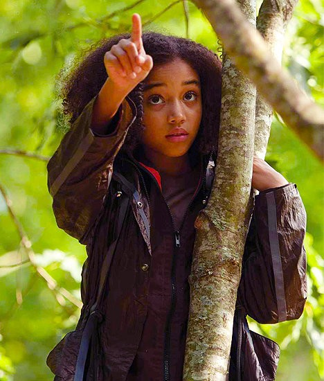 Rue from the Hunger Games