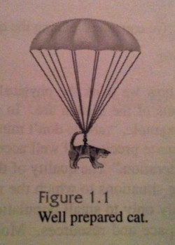 "A picture of a cat wearing a parachute, labeled ""Well prepared cat."""