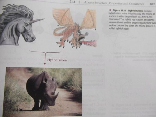 Consider hybridisation in the following way. The mixing of a unicorn with a dragon leads to a hybrid, the rhinocerous!
